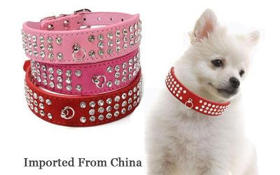 How to choose the best and safety dog collar when import from China?